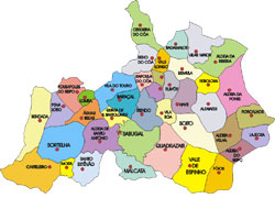 Sabugal - Mapa das freguesias do concelho