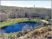 Lagoa para pescar trutas junto aos viveiros