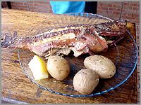Garoupa grelhada com batatascozidas