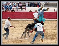 Capeia de Junho em Aldeia da Ponte - Imagem da Semana (2-7-2007)