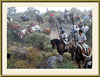Encerro na Lageosa da Raia (Sabugal) - Imagem da Semana (17-9-2007)