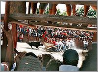 Capeia Arraiana em Aldeia do Bispo