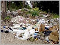 Lixo nafloresta