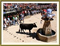 «Capeia Arraiana» em Alfaiates por Tutatux – Imagem da Semana (10-3-2008)