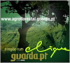 Portal Agro-Florestal