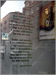 Loja da Pró-Raia em Lisboa