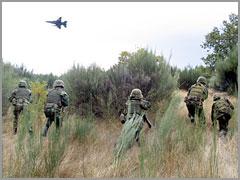 Brigada Intervenção Rápida do Exército