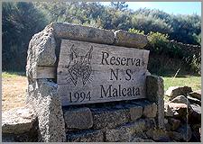 Reserva da Malcata - Sabugal - Penamacor