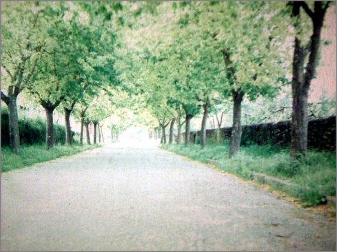 Rua dos Pontões - Sabugal - 1975