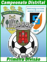 Campeonato Distrital 1.ª Divisão - Associação Futebol Guarda